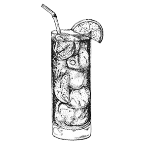 Gin Tonic   Pach Drinks